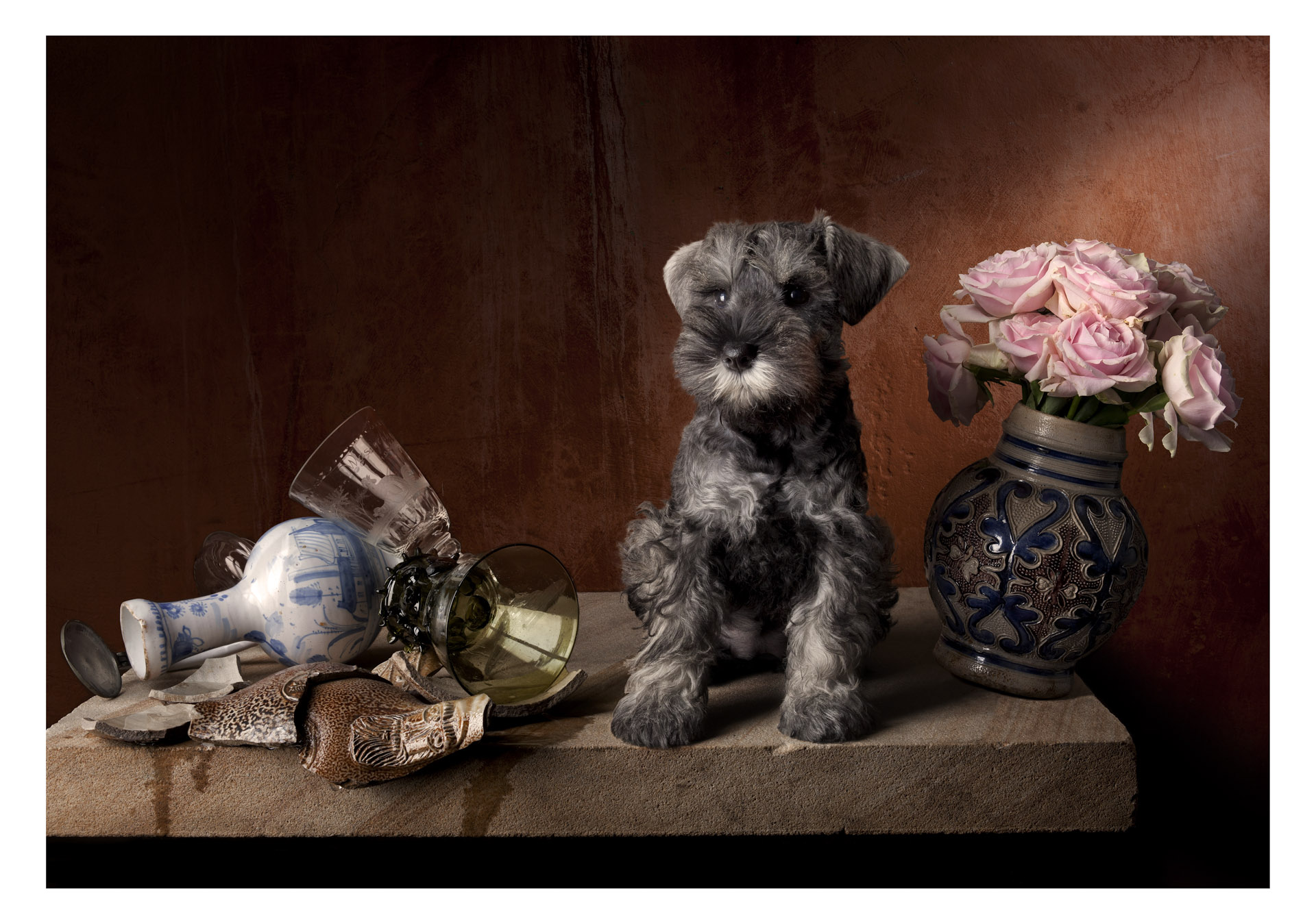 Still life with puppy